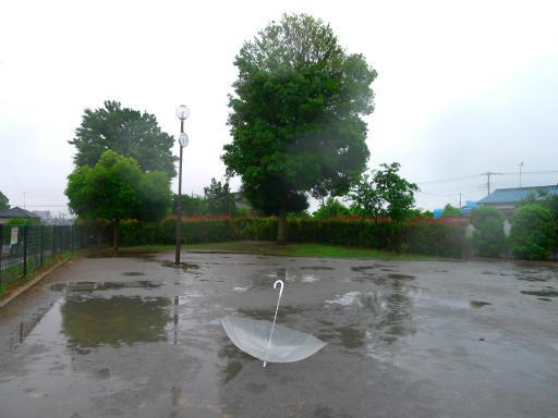 20150619・雨の日のささやき17