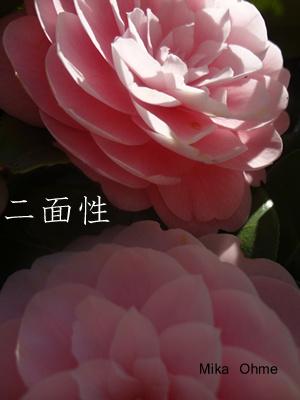 東京恵比寿の結婚相談所ハッピーカムカムアドバイザー婚活ブログ-nimensei