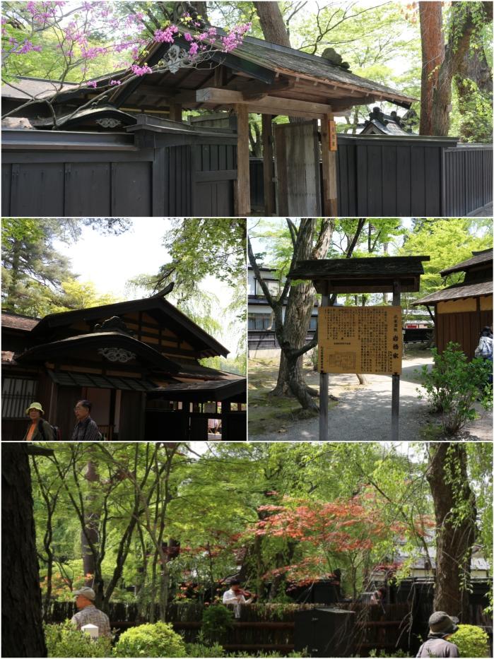 IMG_6944_Fotor_Collage.jpg